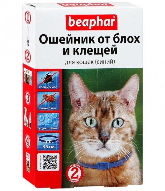 Ошейник от блох для кошек инструкция